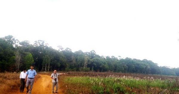 """Đắk Nông: Khó tin """"cấp nhầm"""" sổ đỏ gần 3 hecta rừng đặc dụng"""