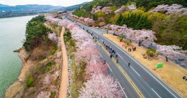 Hàn Quốc mở trung tâm đăng ký visa tại TPHCM