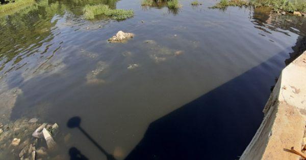 """Sông Hàn """"thoi thóp"""" vì vệt nước thải đen ngòm, ngập váng dầu"""